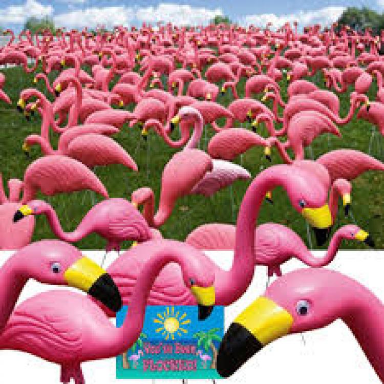 Flamingo Yard display
